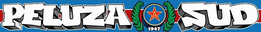 Peluza Sud Steaua